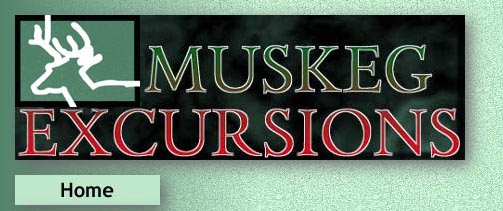 Muskeg Excursions home
